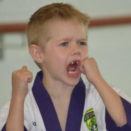 Karate The winner school